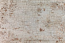stock photo of wood  - The texture of wood - JPG
