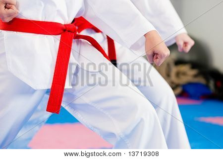 Постер, плакат: Люди в тренажерный зал в боевых искусств осуществляющих тхэквондо, холст на подрамнике