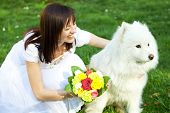 stock photo of laika  - Bride with dog Samoyed sitting on the grass - JPG