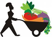 Silhouette woman chef vegetable wheelbarrow