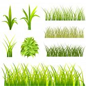 set of grass vector