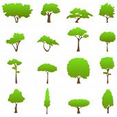 tree graphics vector