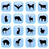 animal vector buttons