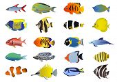 stock photo of sea life  - Set of tropical fishes - JPG