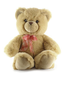 picture of stuffed animals  - Teddy bear isolated over a white background - JPG