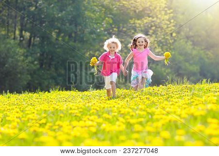 poster of Kids Play. Child In Dandelion Field. Summer Flower