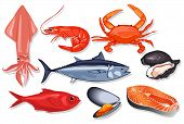 Different Kind Of Fresh Seafood. Vector Mussel, Fish Salmon, Shrimp, Squid, Craps, Mollusk, Oyster,  poster