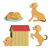 Vector Illustration Cute Dog Character Funny Purebred Puppy Comic Smile Happy Mammal Breed Drawing.  poster