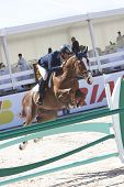 VALENCIA, SPAIN - MAY 8: Rider Diaz Vecino, Horse Baly Van Stapelvoorde, Spain in the Global Champio