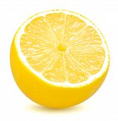 Isolated Lemon. Half Of Lemon Citrus Fruit Isolated On White Background With Clipping Path poster