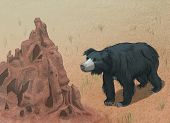 Sloth Bear Meets Termite Mound