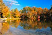 Peak Fall Foliage At A Lake