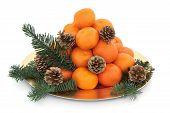 Christmas Mandarin Fruit