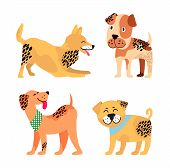 Dogs Images Collection, Representing Icons Of Different Breeds Canine Animals, Four Spotted Puppies  poster
