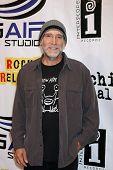 LOS ANGELES - SEPT 22:  David Lee Miller arriving at the premiere of
