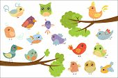 Cute Bird Characters Set, Cute Colorful Cartoon Birds Flying, Singing, Sitting On The Branch Vector  poster