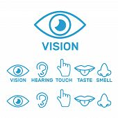Icon Human Senses: Vision, Smell, Hearing, Touch, Taste. Icons Sense Nose, Ear, Eye, Hand Vector poster