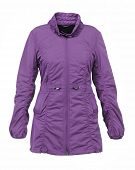 foto of jupe  - violet women jacket - JPG
