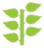 Halftone Round Spot Flora Plant Icon. Pictogram On A White Background. Vector Collage Of Flora Plant poster