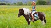 Horseback riding - lovely cowgirl is riding a pony