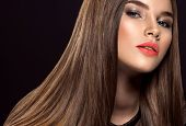 Woman with beauty long brown hair. Beautiful fashion model with long straight hair. Model with a smo poster