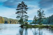 A Small Island With Trees On The Norwegian Noklevann Lake, In The Ostmark, At Oslo, Scandinavia poster