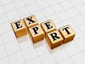 Golden Expert