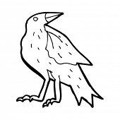 cartoon carrion bird
