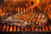 stock photo of t-bone steak  - A top sirloin steak flame broiled on a barbecue - JPG