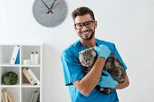 Handsome Veterinarian Smiling At Camera While Holding Tabby Scottish Straight Cat On Hands poster