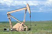 stock photo of nonrenewable  - Pumping oil on the prairie - JPG