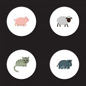 Set Of Zoology Icons Flat Style Symbols With Pig, Hippo, Cat And Other Icons For Your Web Mobile App poster