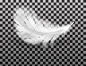 White Fluffy Feather With Shadow Vector Realistic Isolated On Transparent Background. Feathers From  poster