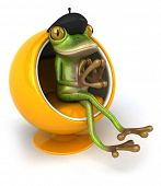 foto of french beret  - French frog - JPG