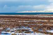 Iceland Weather And Icelandic Landscape, Winter In Iceland, Sunny Day In Winter, Icelandic Bayshore poster