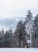 Snowshoe Ski Slope
