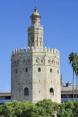 Golden Tower (torre Del Oro), Seville, Spain