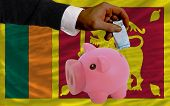 Funding Euro Into Piggy Rich Bank National Flag Of Srilanka