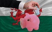 Funding Euro Into Piggy Rich Bank National Flag Of Wales