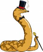 foto of anaconda  - Rich boa in hat and cane vector illustration - JPG