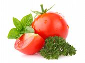 Ripe Tomato With Basil And Parsley