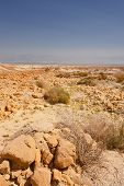 Rocky Reserve