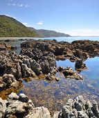 Kaikoura Rock Pool Vertical Panorama, New Zealand
