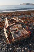 Damaged Lobster Trap