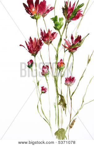 Постер, плакат: Акварельная живопись цветов, холст на подрамнике