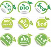Set Of Green Bio And Eco Stickers