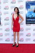 LOS ANGELES - NOV 9:  Breann Johnson at the AFI FEST