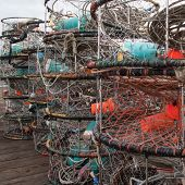 Dungeness crab pots stored on wharf