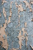 Tin Surface With Peeling Paint