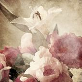 stock photo of day-lilies  - art floral vintage sepia background with pink peonies and white lily - JPG